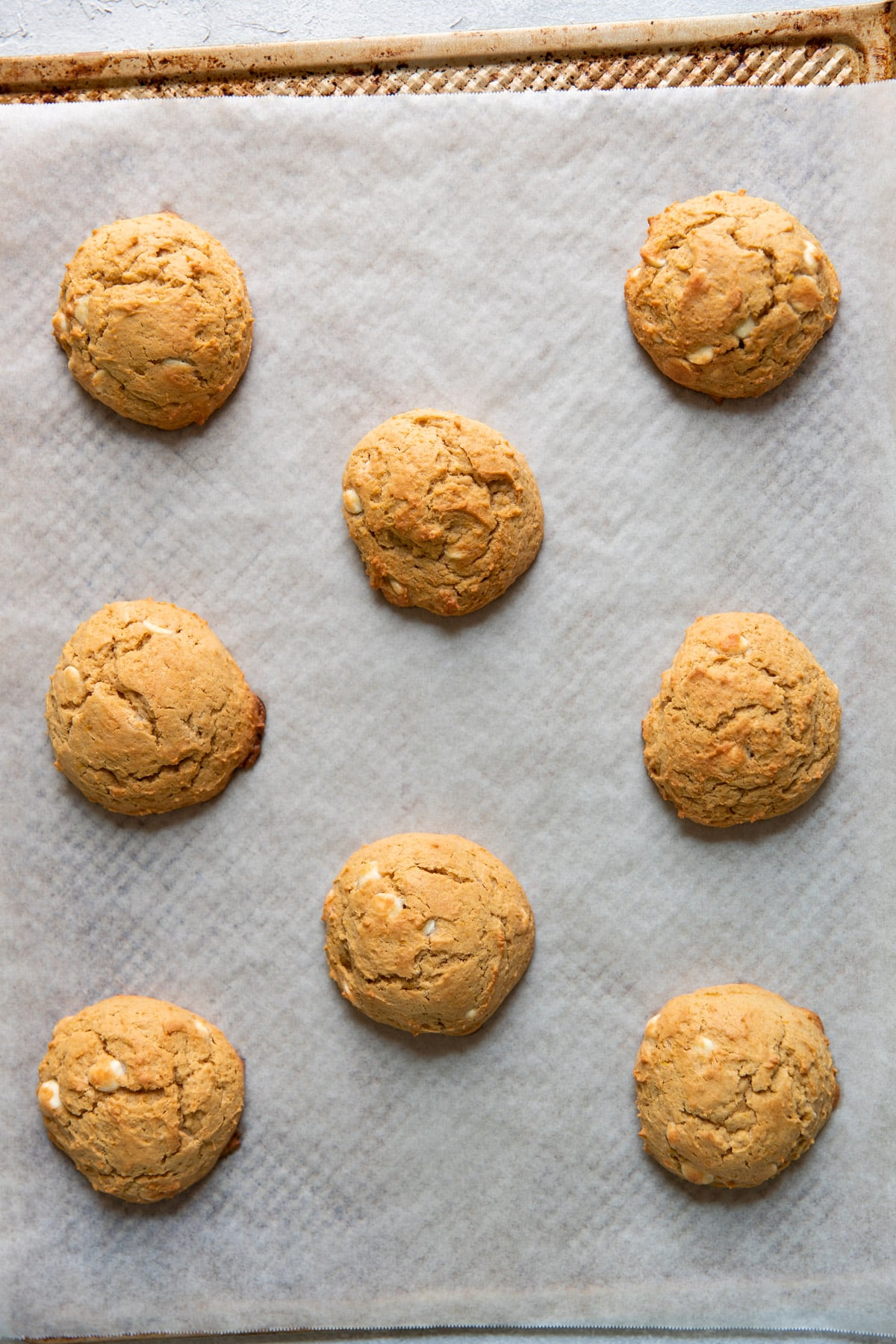 pumpkin cheesecake white chocolate chip cookies on a baking sheet